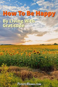 How To Be Happy By Living With Gratitude