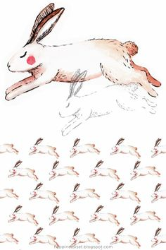 Pen and watercolour fox and hare illustrations for business card designs