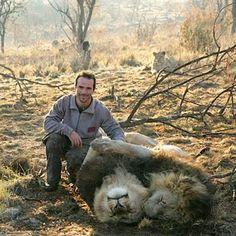 Lion Whisperer - Home