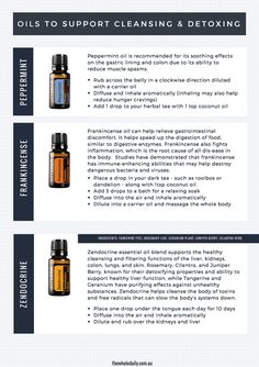The Essential Oil Detox and Cleanse Plan - The Whole Daily