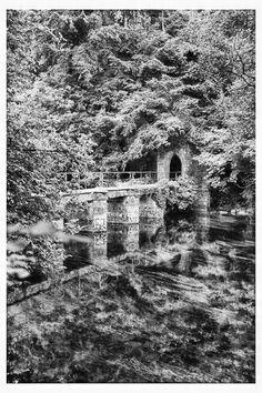 Bridge At Cong Abbey www.davidpolandphotography.com City Photo, Ireland, Photo Galleries, Bridge, Shots, Gallery, Places, Roof Rack, Lugares