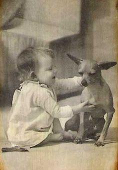Photographie vintage de bébé pas plus grand que son chihuahua.