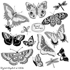 This item is unavailable Owl Clip Art, Butterfly Clip Art, Butterfly Drawing, Silhouette Clip Art, Animal Silhouette, Tattoo Apprenticeship, Flying Tattoo, Knee Tattoo, Wedding Clip