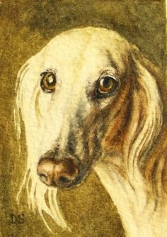 Saluki Portait Watercolor Painting Dog Art Pet Portrait, painting by artist Debra Sisson