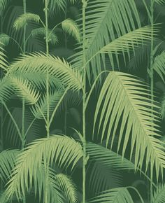 Cole & Son Palm Jungle Forest Green Wallpaper main image