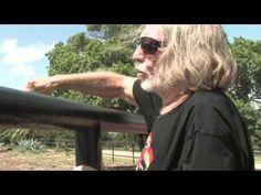 sheryl Crow, Viggo Mortensen, Willie Nelson, speak for Wild Horses