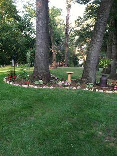 DIY landscaping my back yard