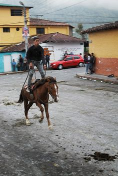 Caballo, Ferias de San Isidro Labrador - Santo Domingo - Mérida - Venezuela