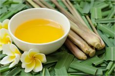 17 Amazing Benefits Of Citronella Oil For Skin, Hair And Health