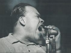 James Cotton Jazz Blues, Blues Music, Great Artists, Music Artists, Wolf Band, James Cotton, Blue Roots, William Christopher, Blues Artists