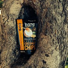 This little bare is sitting in a tree...k-i-s-s-i-n-g! Well, come on! Who's your honey bare? ;) #coconutchips #coconut #lifeisgood #love #saturday