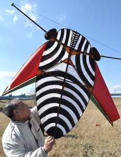 Kite Surf, Go Fly A Kite, Kites Craft, Kite Making, Dji Spark, Nagoya, Hot Air Balloon, Draco, Plane