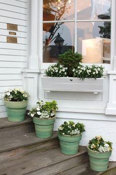 flowersgardenlove:  love the pots Flowers Garden Love