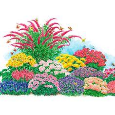 Hohe Stauden Als Sichtschutz | Сад план | Pinterest | Blume ... Blumenbeet Anlegen Teppichbeet Tipps