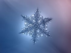 handa: Dark star (via ChaoticMind75)-- This is a beautiful photo of a tiny crystal like snowflake with a blueish white glow coming from from behind it. That glow makes this photo uniquely lovely.