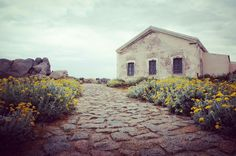 Building, Travel, Sardinia, Vacation, Voyage, Buildings, Viajes, Traveling, Trips