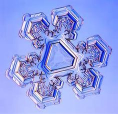 microscope snowflakes - - Yahoo Image Search Results