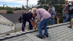 California Strangers Repair Elderly Man's Roof After Neighbor's Heartwarming Facebook Plea - Yahoo
