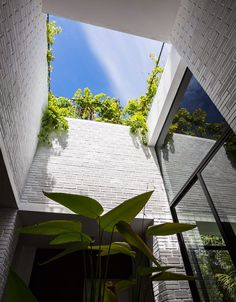 Vo Trong Nghia Architects has recently completed Hoan House, an attractive rooftop garden house that delight you with a stunning green roof. Architecture Durable, Architecture Cool, Sustainable Architecture, Residential Architecture, Contemporary Architecture, Internal Courtyard, Interior Garden, Atrium, Villa