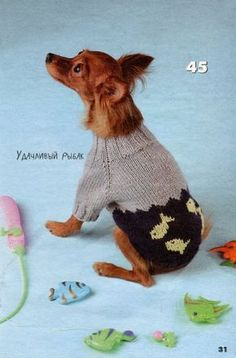 30 Knitted Hats and Sweaters for Cats and Dogs, Modern Pet Design Ideas Crochet Dog Clothes, Cute Dog Clothes, Crochet Dog Sweater, Kitten Costumes, Siberian Cats For Sale, Animal Knitting Patterns, Dog Suit, Cat Sweaters, Cat Accessories