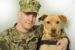 A Labor Day Shout Out to Working dogs for Wounded Warriors  This Labor Day weekend, we want to salute the working dogs that support our wounded warriors. September is National Service Dog Month and we feel that recognizing the need for service dogs t...