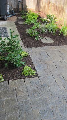 Belgard patio with camellias and other fun shrubs