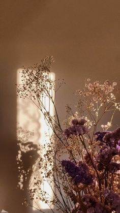 Beautiful Scenery Pictures, Beautiful Flowers Wallpapers, Pretty Wallpapers, Chill Wallpaper, Tumblr Wallpaper, Flower Background Wallpaper, Sunflower Wallpaper, Aesthetic Pastel Wallpaper, Aesthetic Wallpapers
