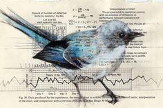 Creative Sketchbook: Paula Swisher's Beautiful Birdies in Books!