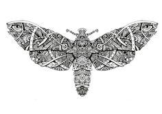 Moth - artwok by Bleeken #doodle #insect