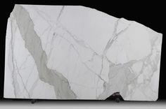 Calacatta marble. My favorite. Large, clean, light grey/blue-ish veins.