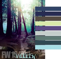 Модные цвета Осень-Зима 2015-2016