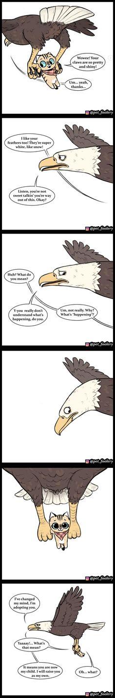 Pixie & Brutus 33 - Types of Comics Funny Animal Comics, Animal Jokes, Cute Comics, Funny Animal Memes, Funny Relatable Memes, Funny Animal Pictures, Funny Comics, Funny Animals, Funny Humor