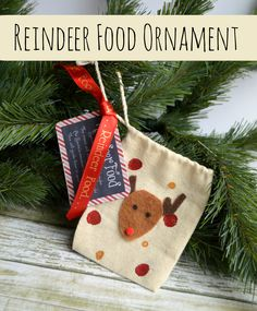 Reindeer Food Ornament