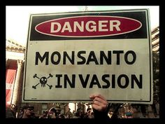 U.S. Government Ties El Salvador USD 277 M Aid Package to Monsanto's GMO Seeds - Food Revolution Network
