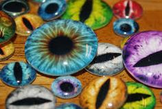 Image result for taxidermy eyes