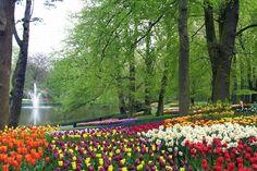 Criado no século 15 num local utilizado para caça (com castelo e tudo), estes 36 hectares de paraíso florido ficam no sul da Holanda. O jardim é a inspiração de muitos paisagistas até hoje.