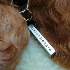 Square Peg Pet Name Tag by Morgan & French, the perfect gift for Explore more unique gifts in our curated marketplace. Custom Dog Tags, Custom Dog Collars, Pet Name Tags, Pet Id Tags, Puppy Names, Pet Names, Life Gets Better, Dog Collar Tags, Large Dogs