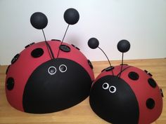 Ladybug family for your garden