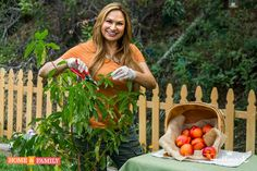 """SET YOUR DVRS!: """"SUMMER PRUNING, FRUIT TREES"""" Learn how to prune your backyard fruit trees in the summer to reduce their vigor and train them to stay small and fruitful! Watch Home & Family show on Hallmark Channel USA at 10am pst Tuesday."""