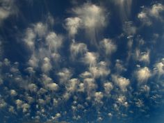 Altocumulus castelanus, a rare cloud formation also known as jellyfish clouds