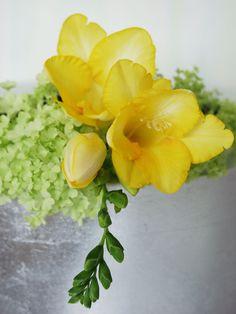 Happy flowers - fresia #yellow