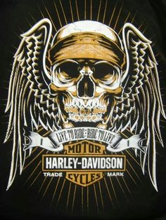 This is a Temporary tattoo of a skull with flames behind it and a banner below it that reads Harley-Davidson. Description from pinterest.com. I searched for this on bing.com/images