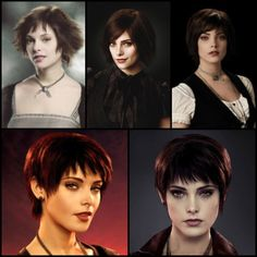 "Alice From ""Twilight To ""Breaking Dawn Part 2"""