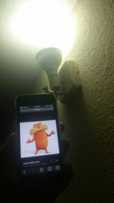 """Wendy Henrriquez This Is My Lorax 02/20/15. My Dad Got new light bulbs """"They Save energy"""" It works For Our Bills and also less energy we using That can be used for other things. It also reduces polluting power plant emission. It helps The world for a better living . We have them In The Hall way and Our livin room. Its affordable and help us and the enviroment. My lorax help me take a picture that reminds me how this light bulbs help the enviroment."""