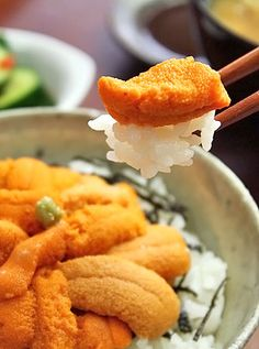 Uni Don, sea urchin on rice... I didn't know you could eat sea.urchins