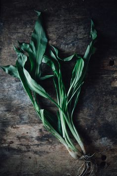 Wild Garlic, or ramps, by food photographer Gunvor Eline Eng Jakobsen