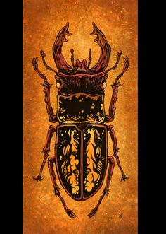 The Stag Beetle by David Lozeau