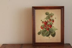 Spice Rack / Vintage Three Mountaineers Strawberry by WildandDaisy