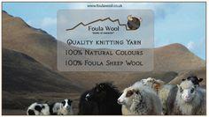 Foula Wool Shetland yarn Poster