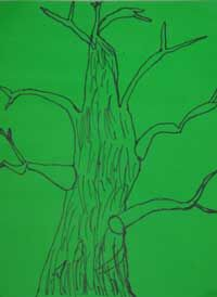 Art education lesson project 7 for Kindergarten students....observing and drawing trees